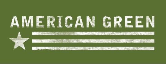 American Green Inc
